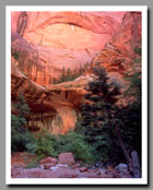 The pink walls of Double Arch Alcove stand brilliantly over Kolob Canyon in Zion National Park in Utah.